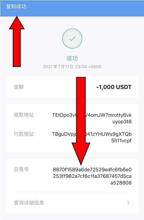区块链常见骗局汇总,如何使用USDT天眼浏览器查询风险?